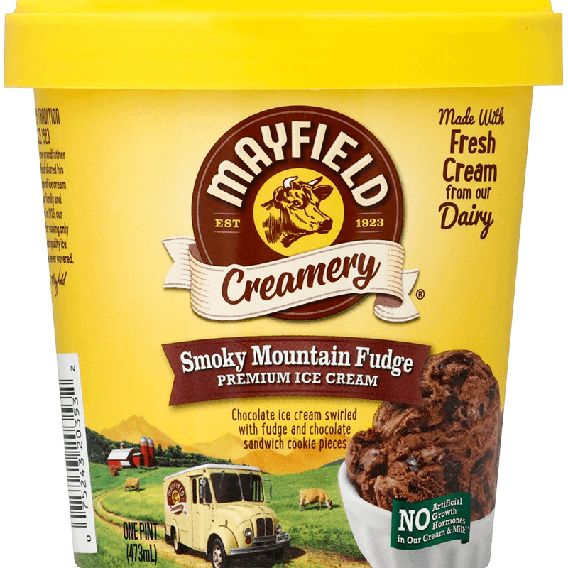 Smoky Mountain Fudge Ice Cream Pint